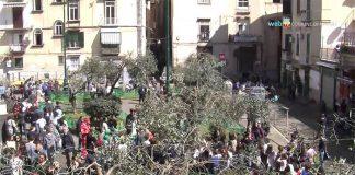 A Montesanto si festeggia l'arrivo della primavera mettendo a dimora alberi di Ulivo