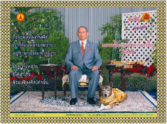 Thailandia, rischia il carcere per aver deriso il re e il suo cane