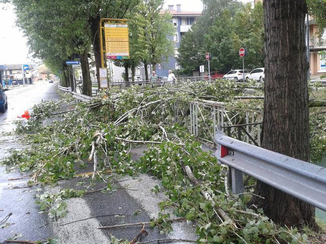 Maltempo Udine, tromba d'aria e forte vento in tutta la città